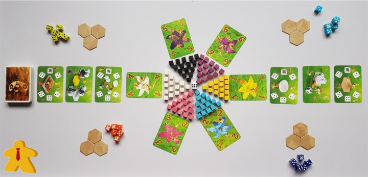 Waggle Dance Review Game Set up